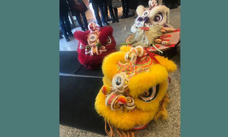 lion dance costumes